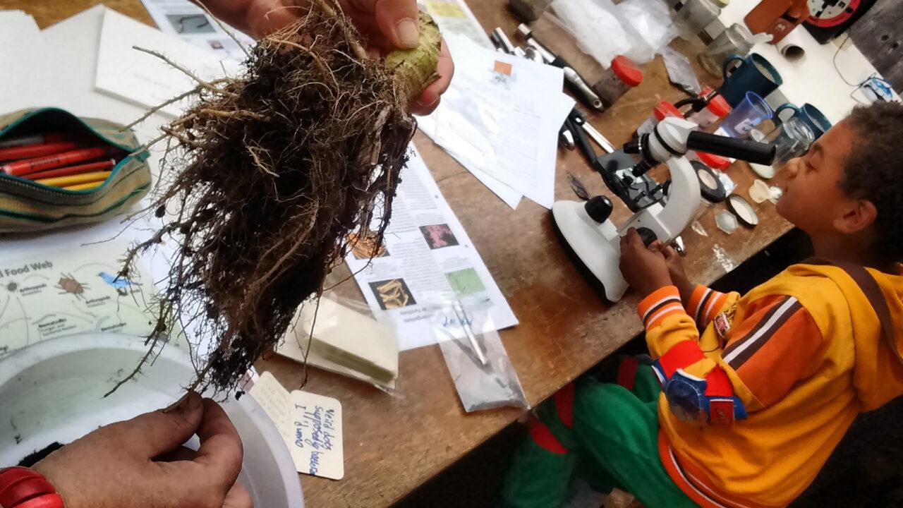 The Roving Microscope community microscope club